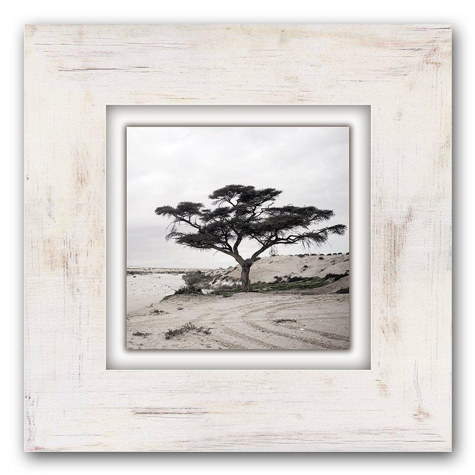 Holzbild, Home affaire, »Baum«, 40/40 cm in grau/weiß