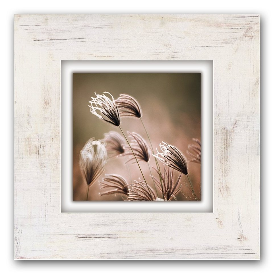 Holzbild, Home affaire, »Gräser mit Blüten«, 40/40 cm in weiß/creme