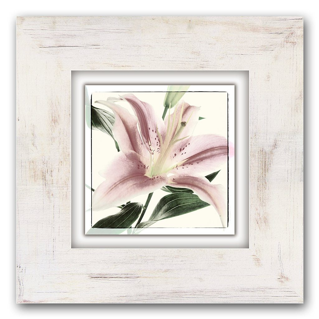 Holzbild, Home affaire, »Blüte einer Lilie«, 40/40 cm