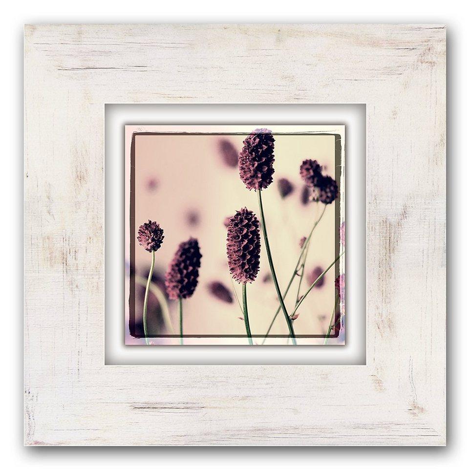 Holzbild, Home affaire, »Gräser mit Blüten«, 40/40 cm in beige/lila