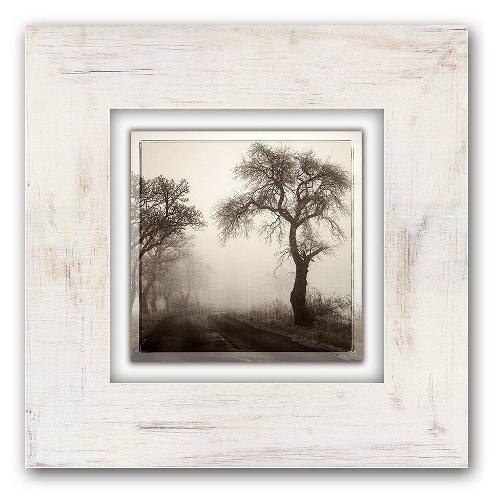 Holzbild, Home affaire, »Bäume im Nebel«, 40/40 cm in beige/braun