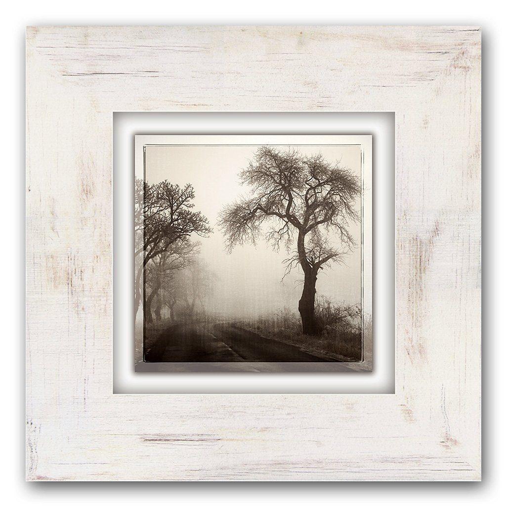 Holzbild, Home affaire, »Bäume im Nebel«, 40/40 cm