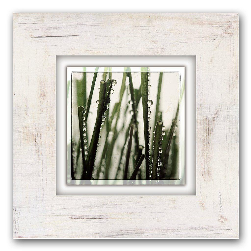 Holzbild, Home affaire, »Grasstängel«, 40/40 cm