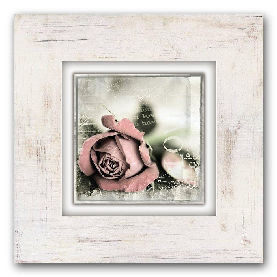 Holzbild, Home affaire, »Rosenblüte mit Schrift«, 40/40 cm in beige/rosa