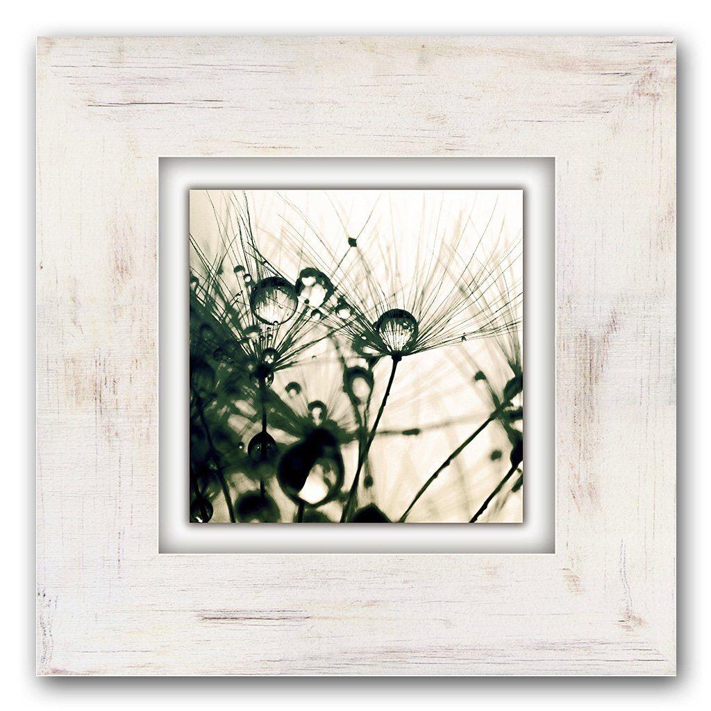 Home affaire Holzbild »Pusteblume mit Wassertropfen«, 40/40 cm