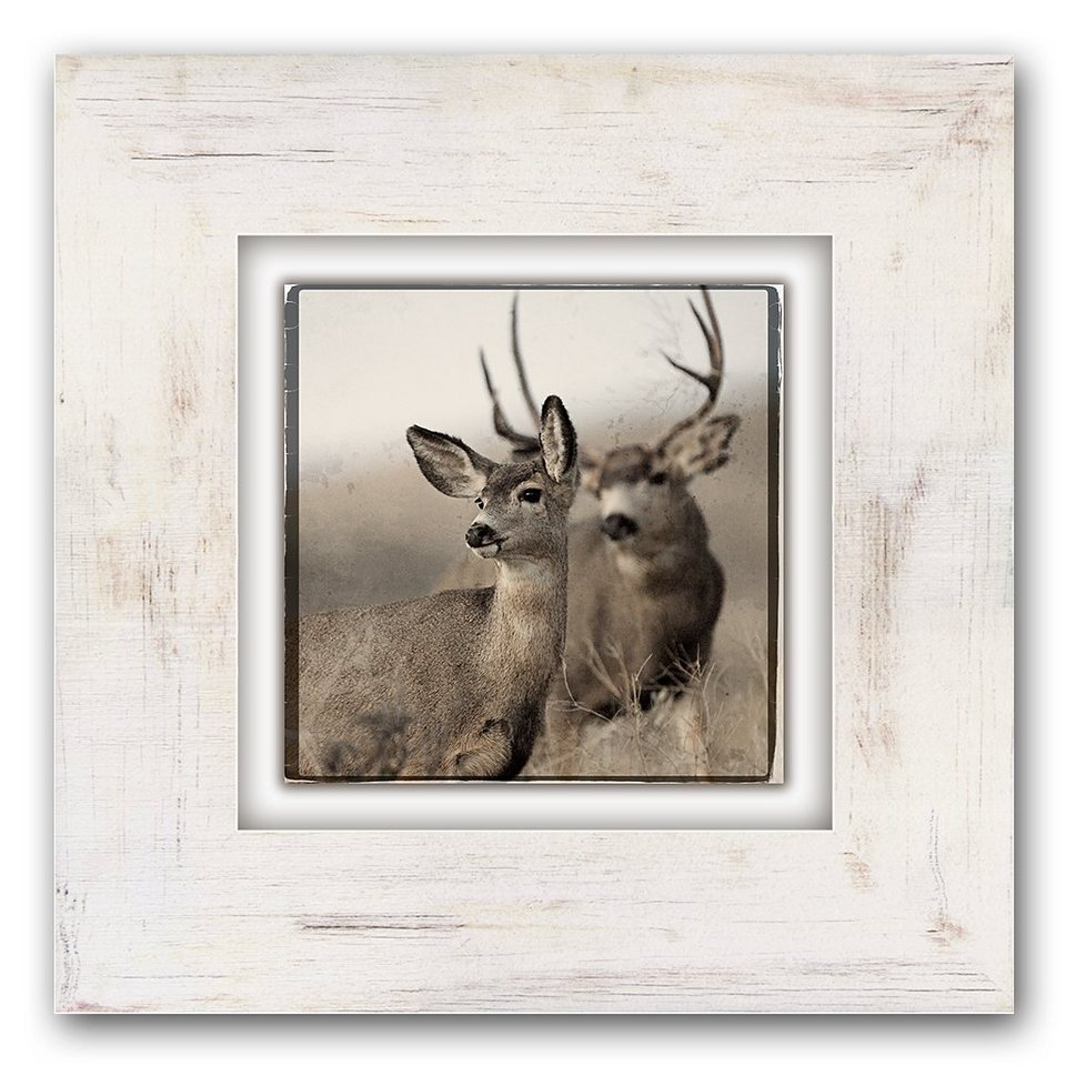 Holzbild, Home affaire, »Reh/Hirsch«, 40/40 cm in beige/braun
