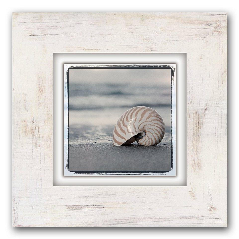 Holzbild, Home affaire, »Schneckenhaus auf Sand«, 40/40 cm in beige