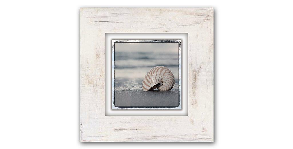 Holzbild, Home affaire, »Schneckenhaus auf Sand«, 40/40 cm
