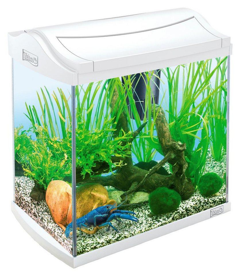 Aquarium »AquaArt II Crayfish« 30 l für Krebse und Garnelen in weiß