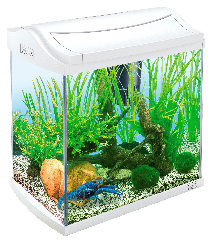 Aquarium »AquaArt II Crayfish« 30 l für Krebse und Garnelen
