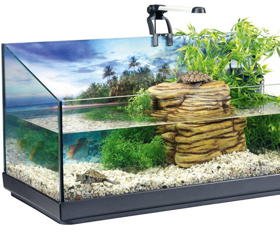 Aquarien-Set »Tetra Repto Set« 40 l für Wasserschildkröten in anthrazit