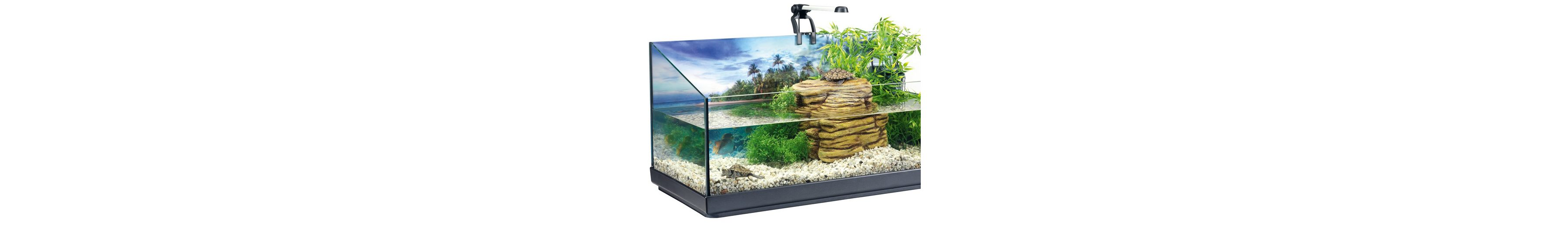 Aquarien-Set »Tetra Repto Set« 40 l für Wasserschildkröten
