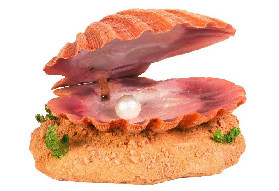 Aquariendeko »Muschel mit Ausströmer« in orange