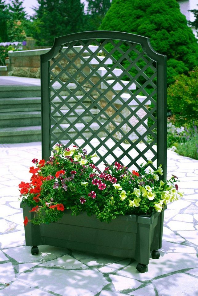 Spalier »mit Pflanzkasten und Bewässerungssystem, 79 cm« in grün