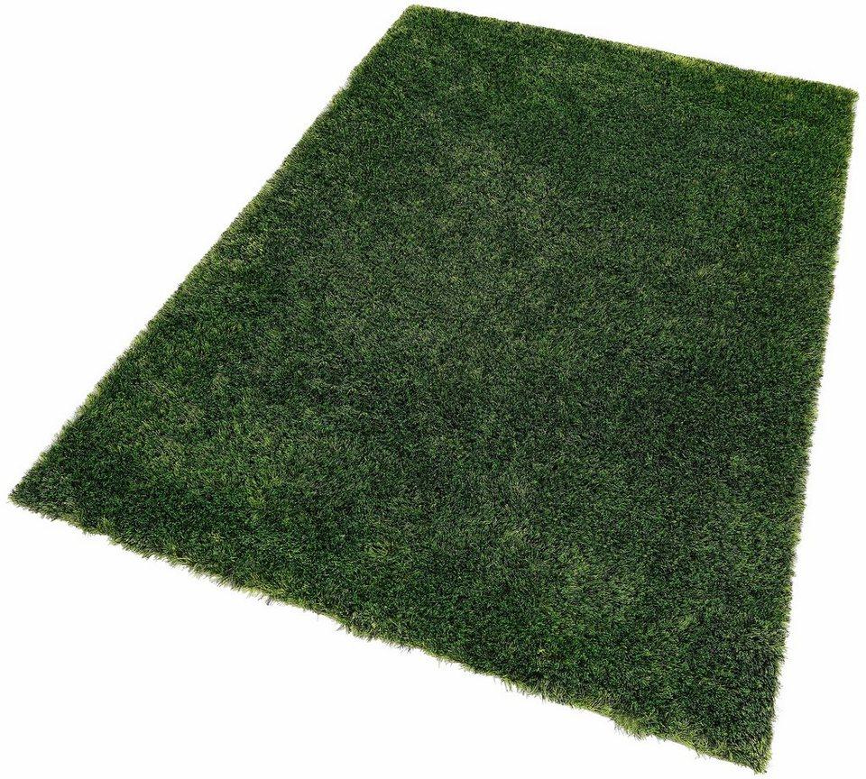 Teppich braun grün  Hochflor-Teppich, Kayoom, »Diamond 700«, Höhe 45mm, handgetuftet ...
