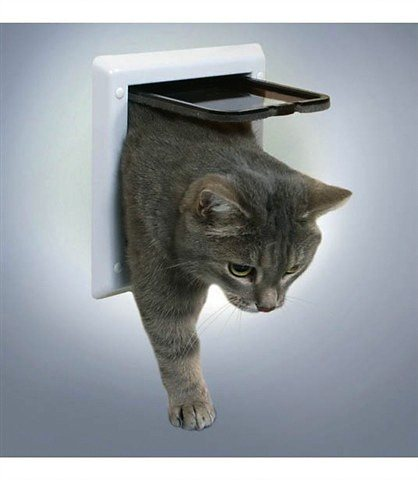 Katzen-Freilauftür in weiß