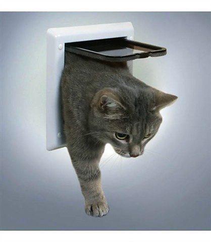 Katzen-Freilauftür