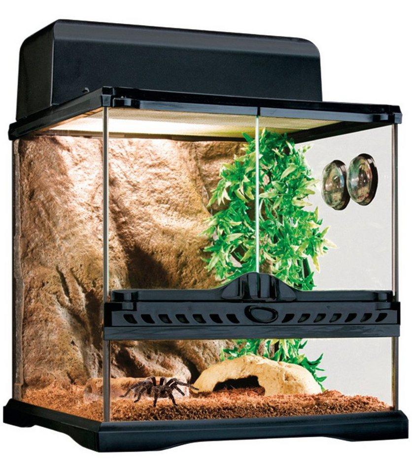 Terrarium-Set »Invertebrate-für Wirbellose « in schwarz