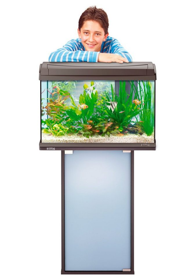 Aquarien-Set »AquaArt Discovery Line« 60 l inkl. Technik und Unterschrank, anthrazit in anthrazit