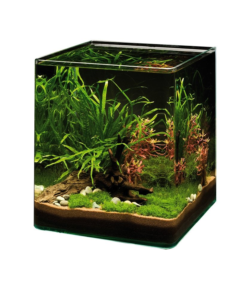 Aquarium »NanoCube - Complete Plus« in schwarz