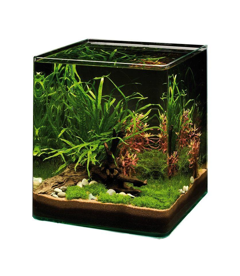 Aquarium »NanoCube - Complete Plus«