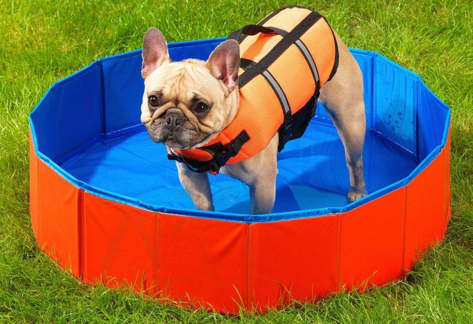 Hunde-Swimmingpool in blau