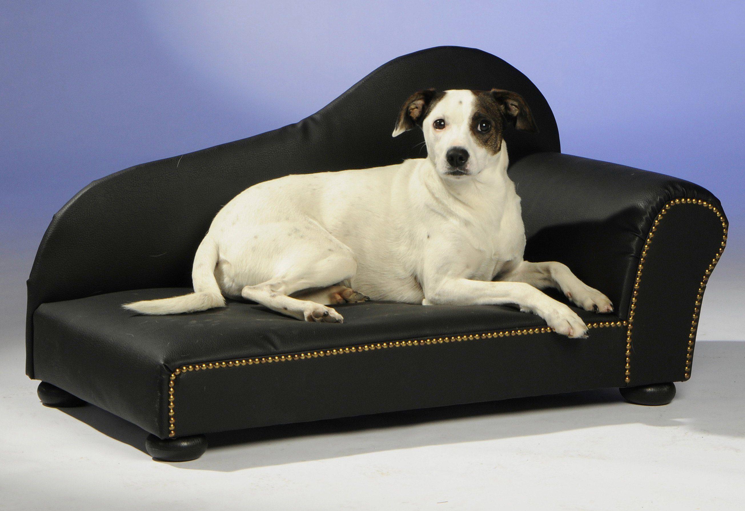Hunde-Sofa »Lederoptik«