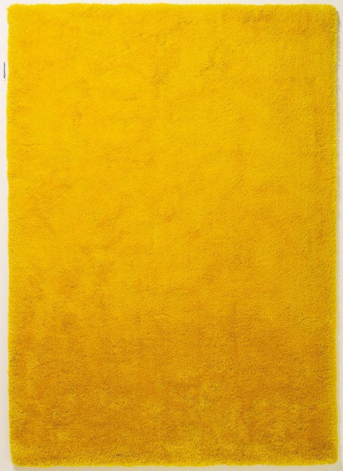 Teppich, Lars Contzen, »colourcourage«, maschinentuft, Wunschmaß in curry