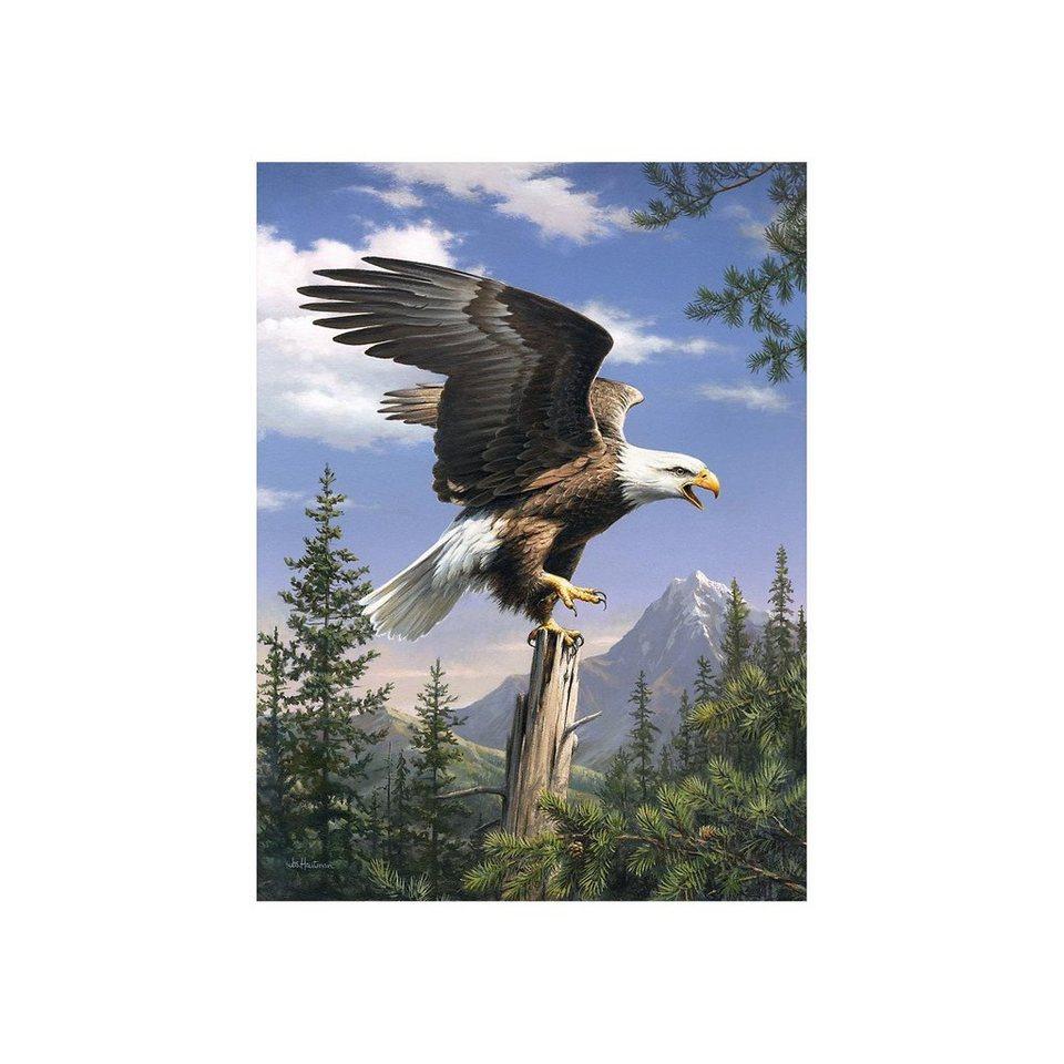 MAMMUT Spiel und Geschenk Malen nach Zahlen Artists Collection ab 8 Adler