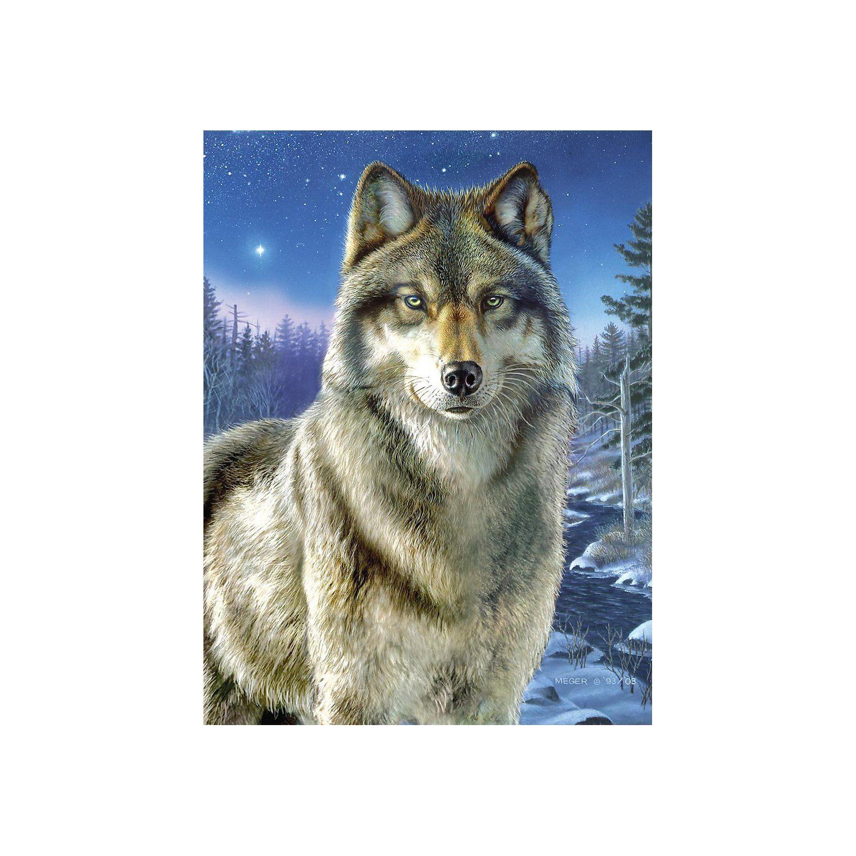 MAMMUT Spiel und Geschenk Malen nach Zahlen Artists Collection ab 8 Wolf