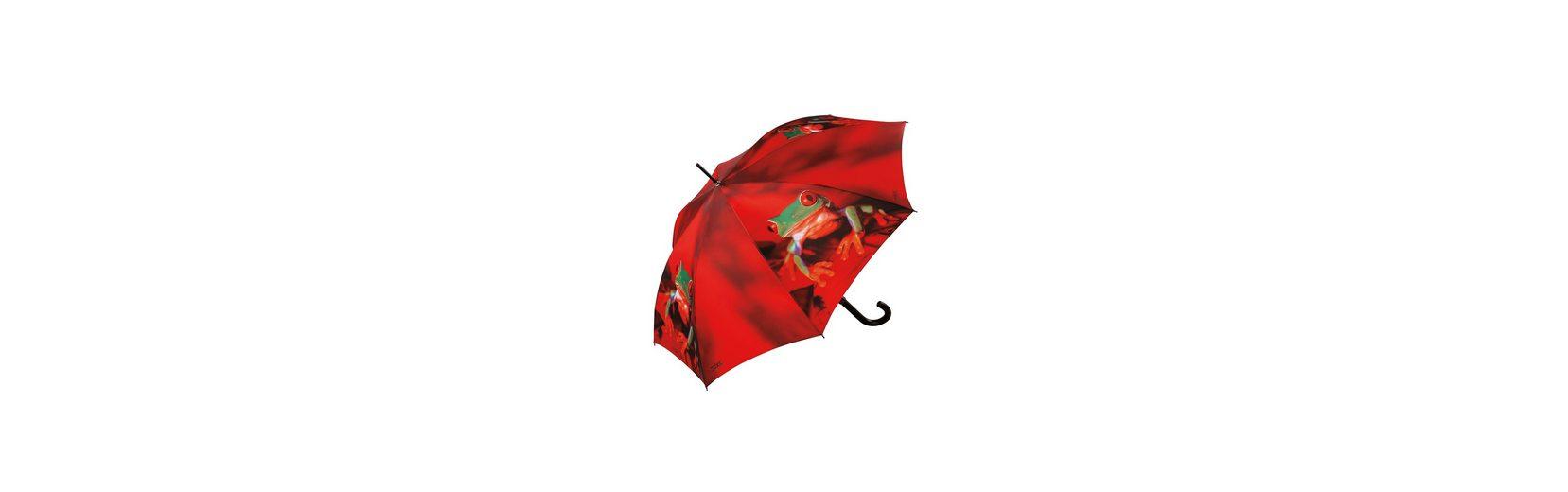Doppler Regenschirm, Automatik Stockschirm »Frosch«