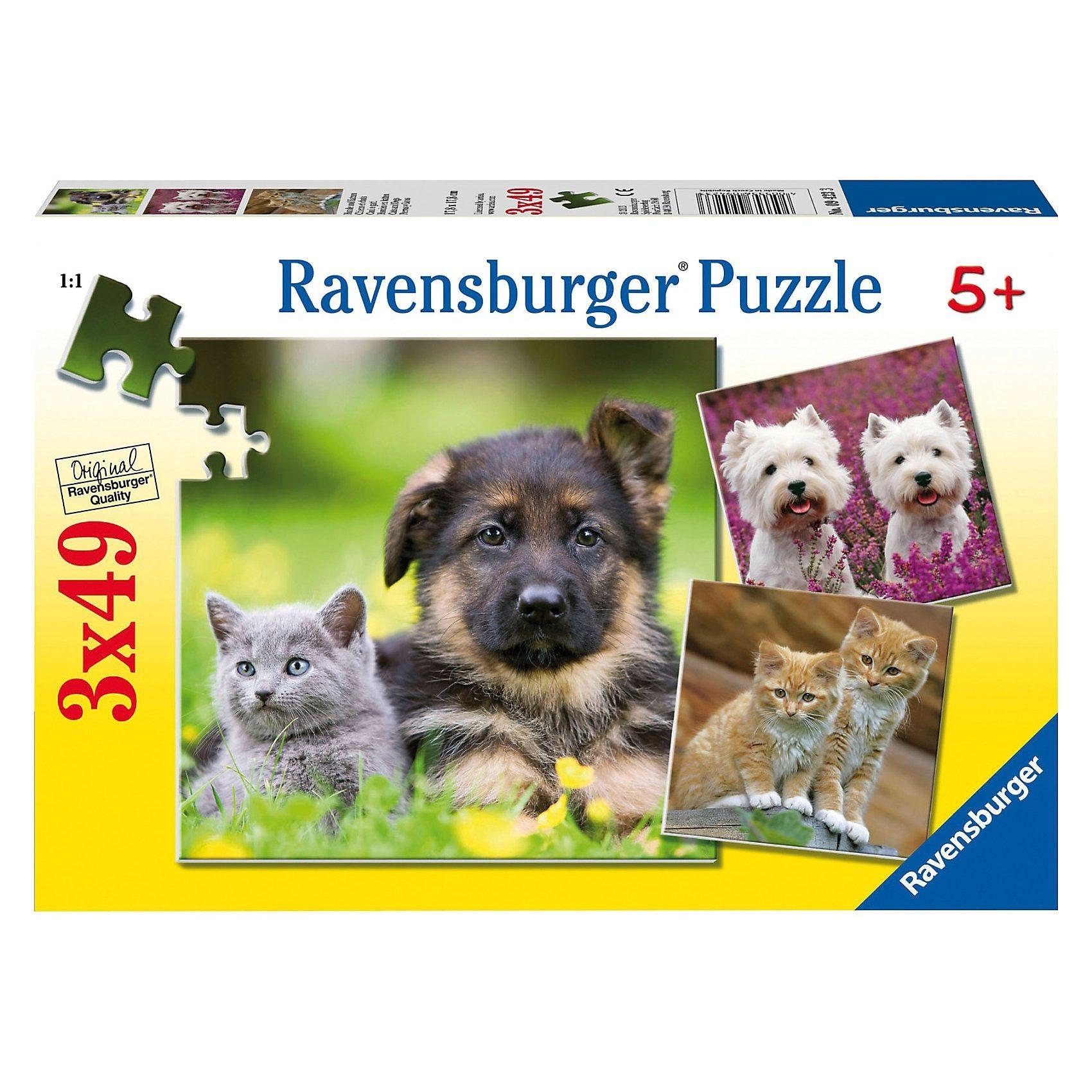 Ravensburger Puzzle 3 x 49 Teile Hunde und Katzen