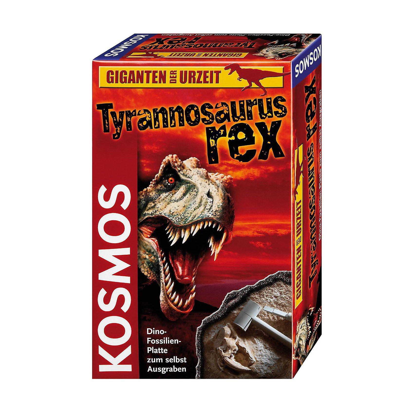 Kosmos Ausgrabungsset Tyrannosaurus Rex
