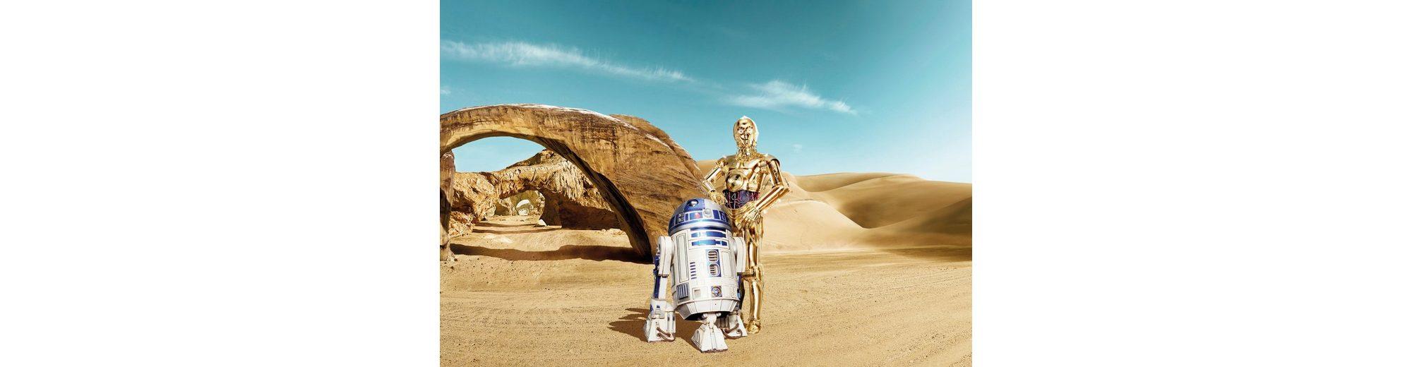 Papiertapete, Komar, »Star Wars Lost Droids«, 368/254 cm