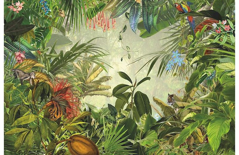 Vliestapete, Komar, »Into The Wild«, 368/248 cm