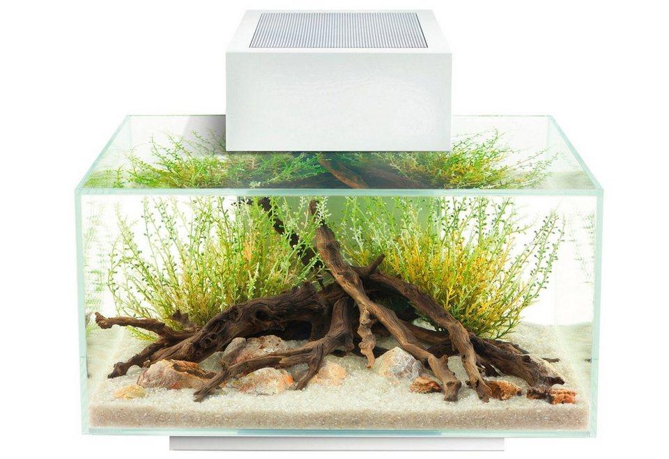 Aquarium »Edge I« in weiß