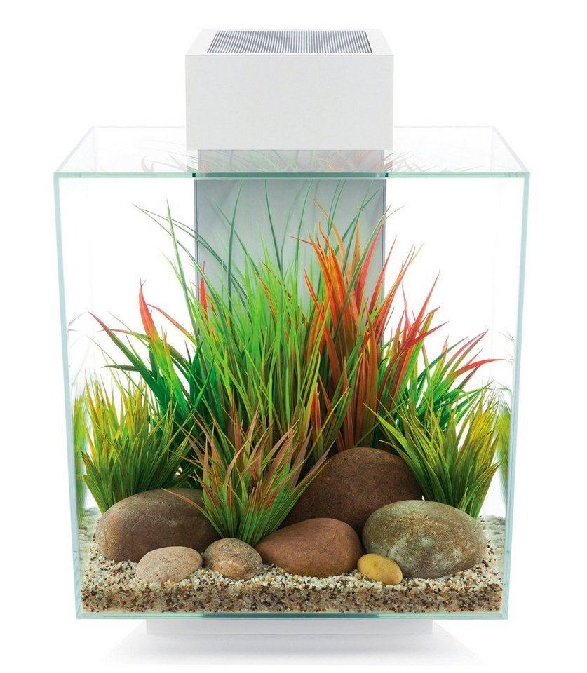 aquarium edge ii online kaufen otto. Black Bedroom Furniture Sets. Home Design Ideas