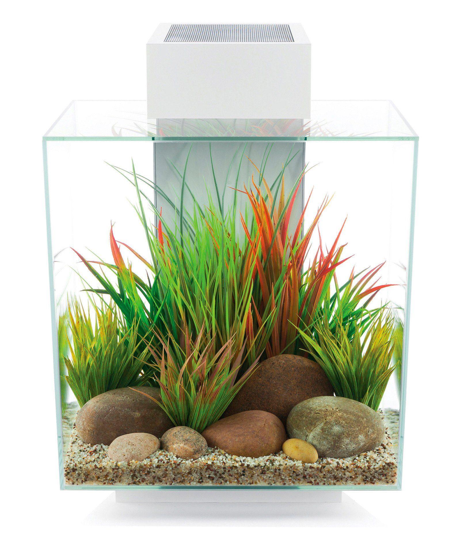 Fluval Aquarium »Edge II«