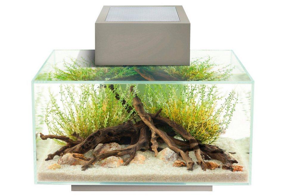 Aquarium »Edge I« in silberfarben