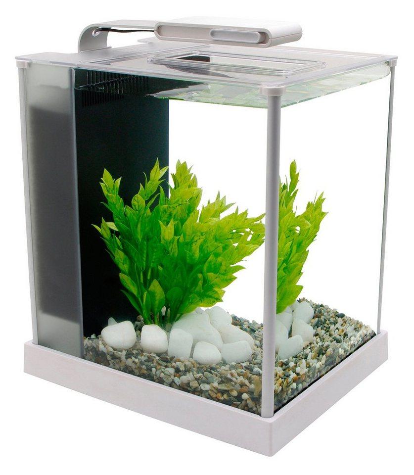 jbl nano floaty 6141900 schwimmender mini scheiben reinigungsmagnet f r nano aquarien bunte. Black Bedroom Furniture Sets. Home Design Ideas