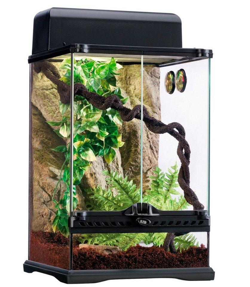 Terrarium-Set »Rainforest« in schwarz