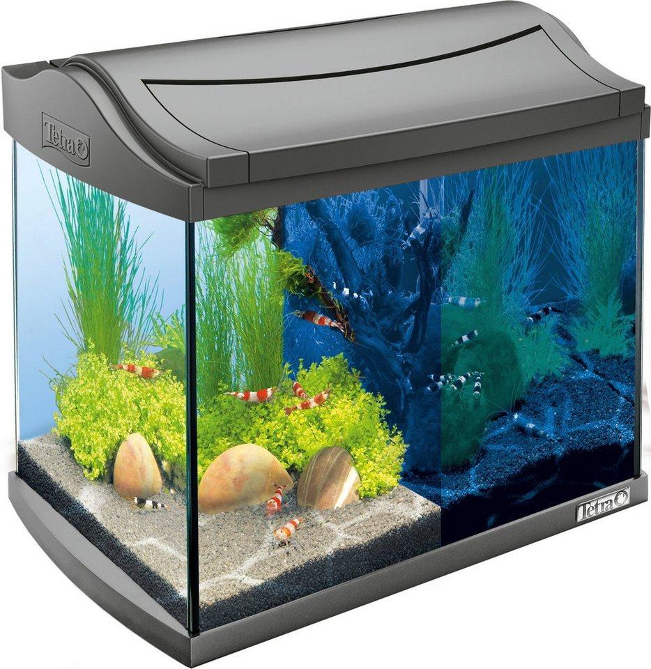 Aquarium »AquaArt LED Discovery Line« 20 l, anthrazit in anthrazit