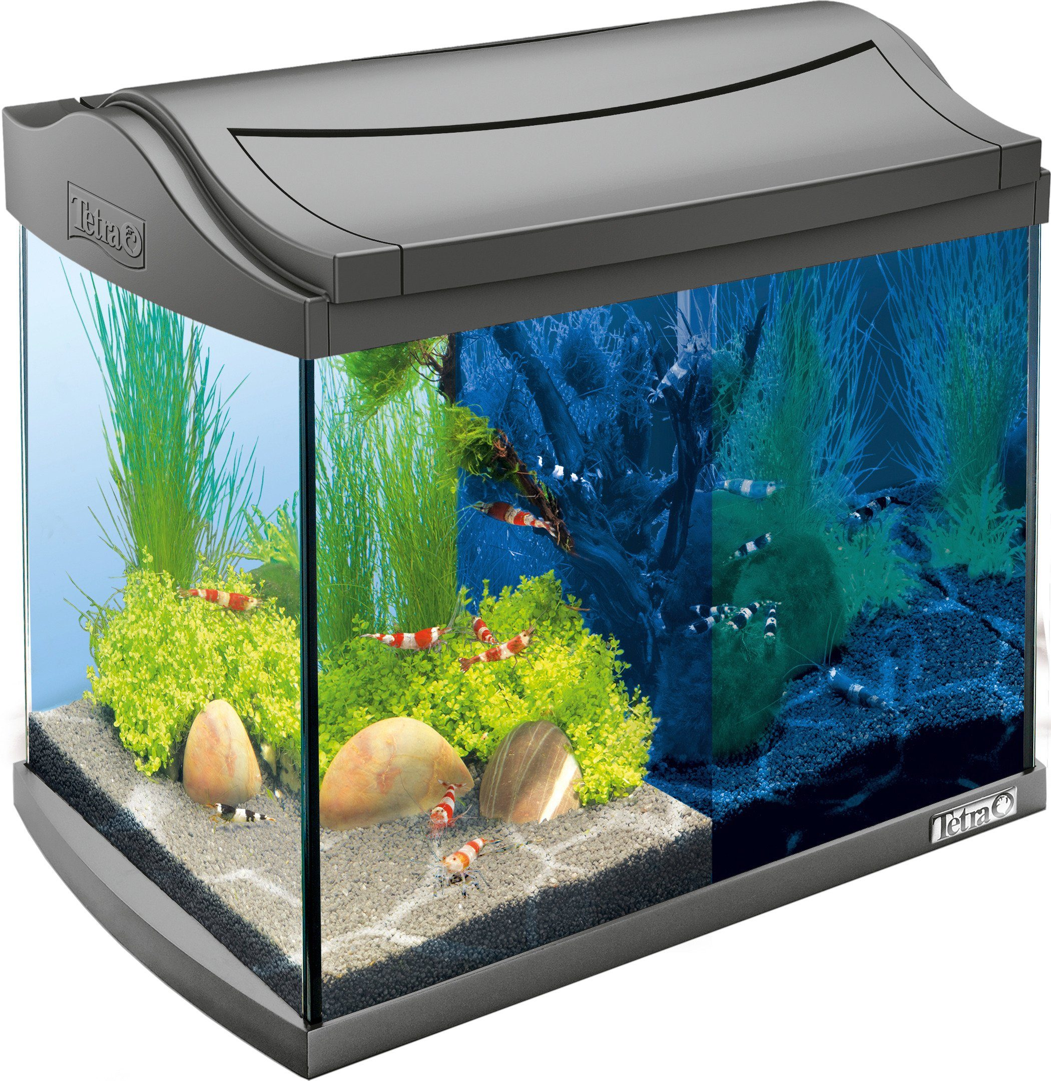 Tetra Aquarium »AquaArt LED Discovery Line« 20 l, anthrazit