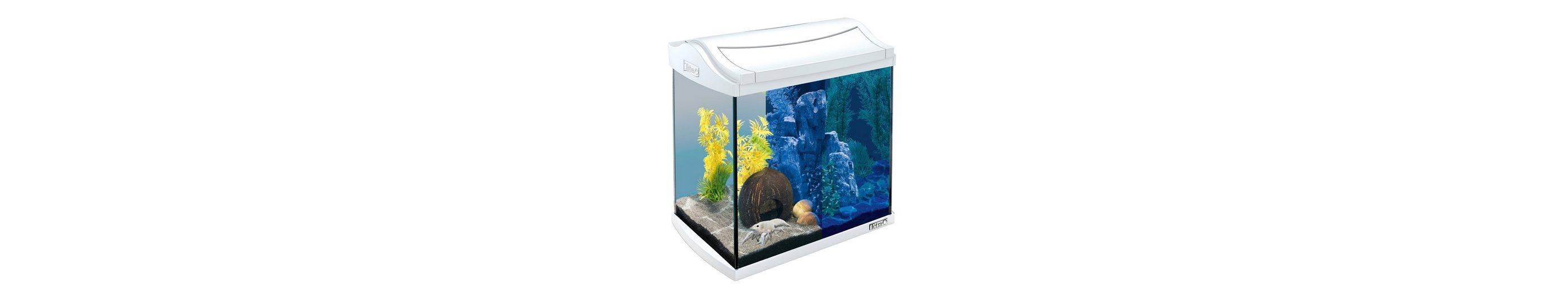 Aquarium »AquaArt LED Discovery Line« 30 l, weiß