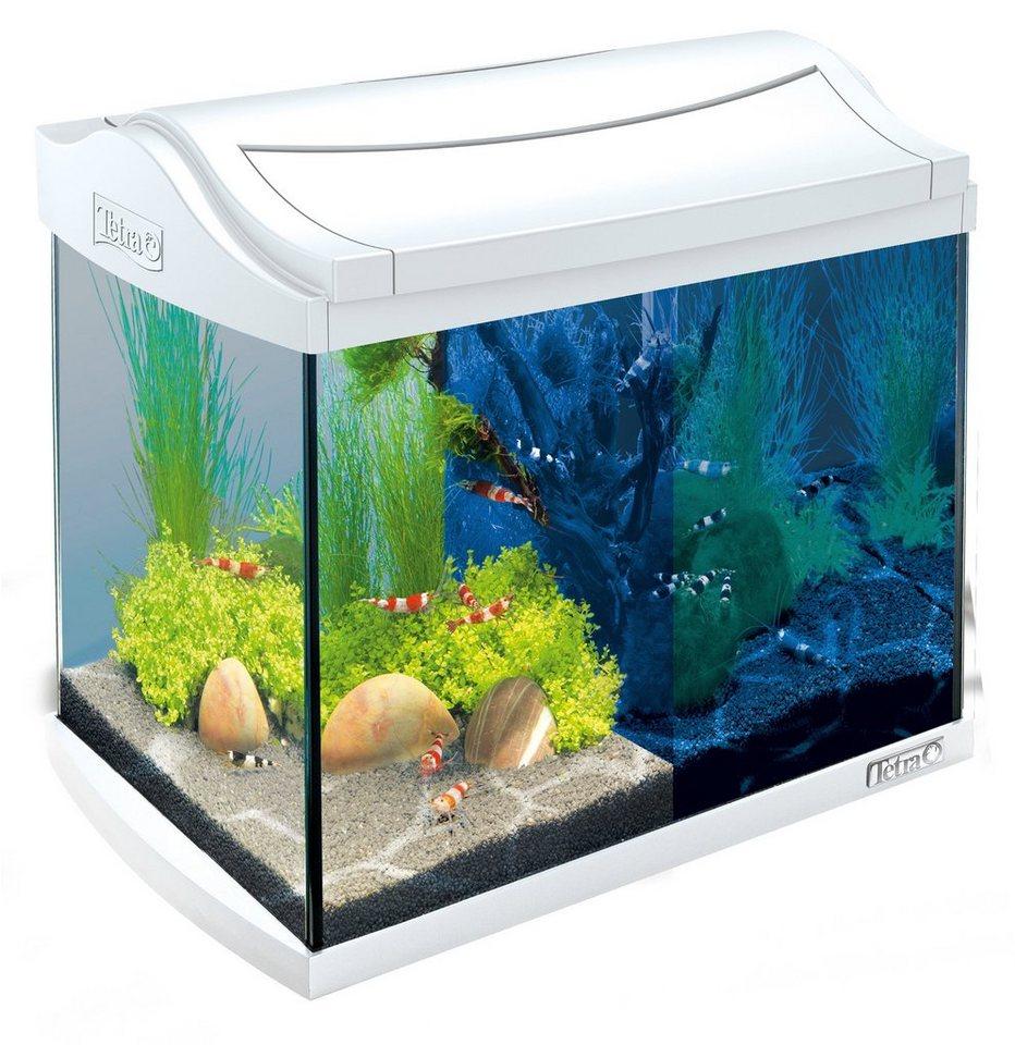 Aquarium »AquaArt LED Discovery Line« 20 l, weiß in weiß