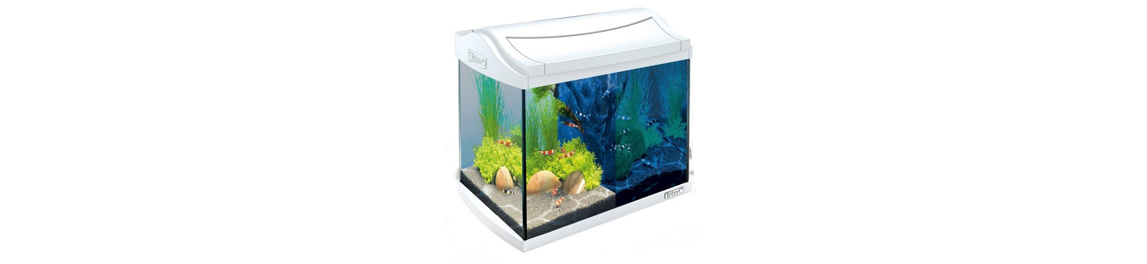 Aquarium »AquaArt LED Discovery Line« 20 l, weiß
