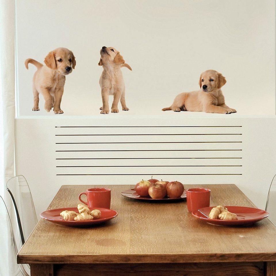 Wandsticker Hundewelpen, 6-tlg in beige