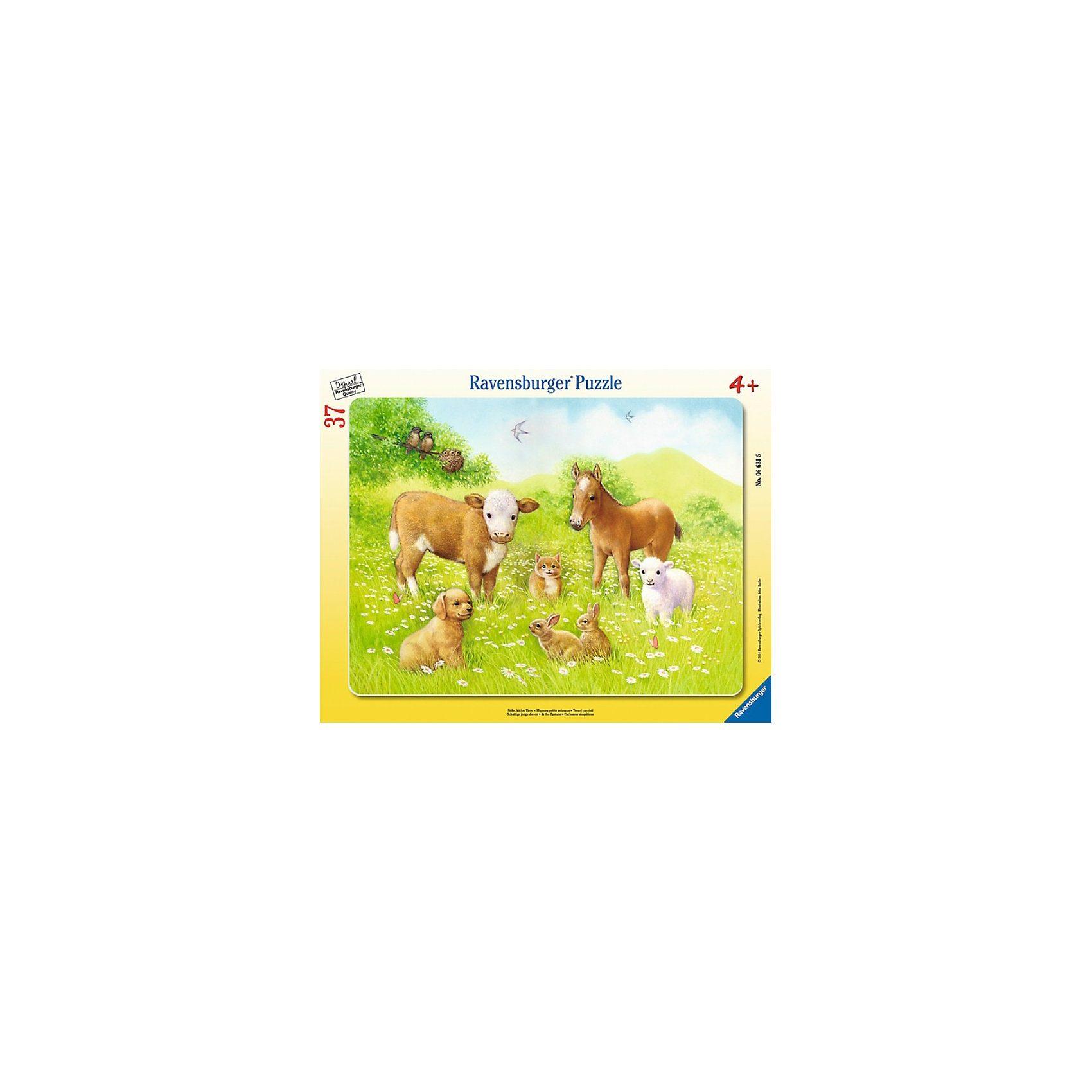 Ravensburger Süße, kleine Tiere