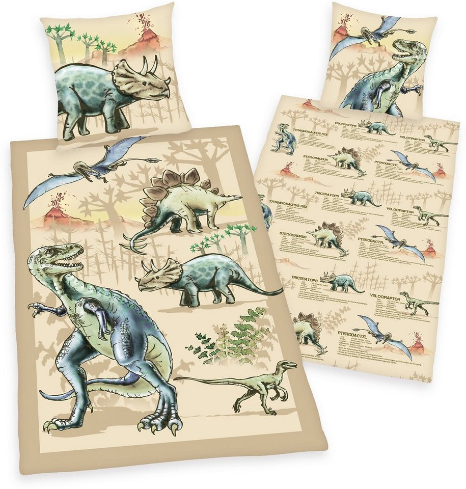 Kinderbettwäsche, Young Collection, »Dinosaurier«, mit Infotexten ...