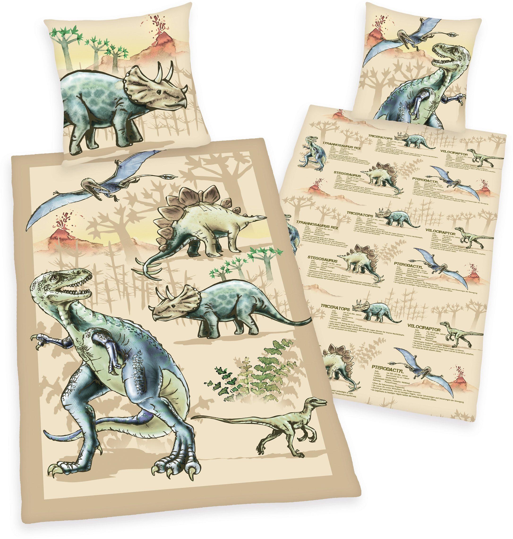Kinderbettwäsche, Young Collection, »Dinosaurier«, mit Infotexten